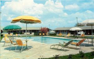 Manchester TN~Cumberland Motel Swimming Pool~Patio Furniture~1960s Postcard