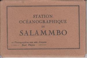 SALAMMBO STATION OCEANOGRAPHIQUE TUNISIA TUNISIE 10 CPA (pre-1940)