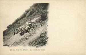 bolivia, BENI, La Subida de Sorate (1899)