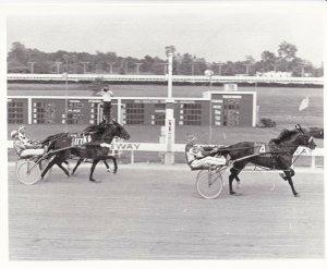 WINDSOR Raceway Harness Horse Race, MAYS VICTOR Wins Race