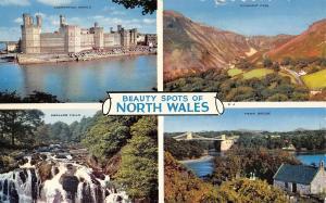 BR66230 beauty spots of north wales menai bridge swallow falls     14x9cm