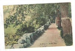 On Woburn St., Reading, Massachusetts, PU-1910