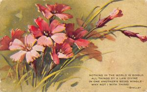 Catherine Klein~Dusky Purple Pink Flowers~Shelley Quote~Mingle~1908 Postcard