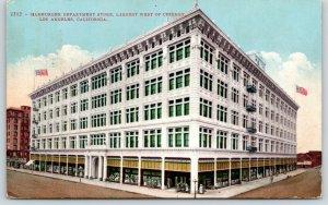 Los Angeles California~Hamburger Department Store~Window Displays~1911 Postcard