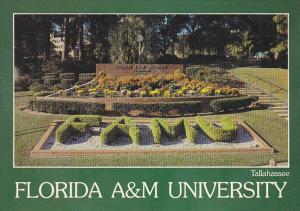 Floral Display A & M University Tallahassee Florida
