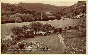 Symonds Yat The Gorge from Poddocks Hotel Forest Panorama Postcard