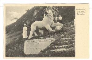 Stone Lion, Gun Hill, Barbados, 10-20s