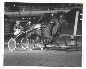 CICERO, Illinois; Sportsman's Park, ANNIE'S FRILLY wins 1983