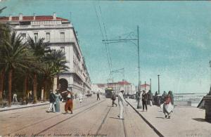 Alger. Square et boulevard de la pepublique , 00-10s
