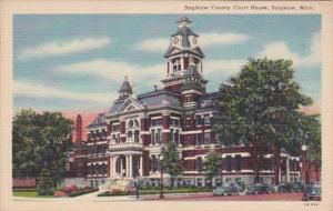 Michigan Saginaw County Court House Curteich