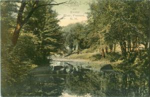 Exeter River Scene Fremont, New Hampshire NH Pre-Linen Postcard