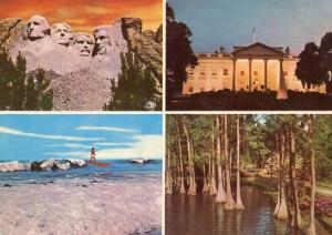 Multi-View America: Mt. Rushmore, The White House, Surfer & Cypress Swamp