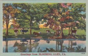 Greetings From Blooming Glen Pennsylvania Cattle Grazing Scene