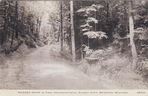 Bridgman MI - WOODED DRIVE to the First Congregational Church Camp, 1940s
