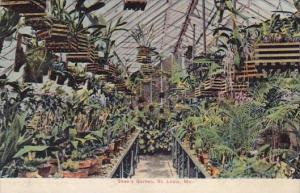 Shaws Garden Saint Louis Missouri 1911