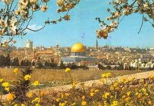 Israel Old Vintage Antique Post Card Old City viewed from the Mount of Olives...