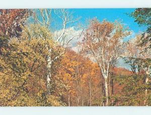 Unused Pre-1980 PARK SCENE Turkey Run State Park - Marshall Indiana IN H1685