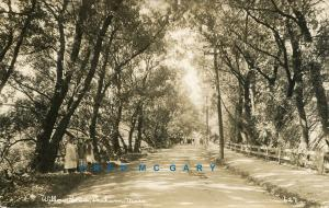 1915 Dedham Massachusetts Real Photo Postcard: Willow Road Including People