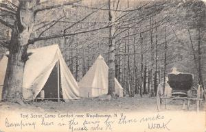 Woodbourne New York~Camp Comfort~Horse & Buggy at Tent~Camping for 3 Weeks~1908