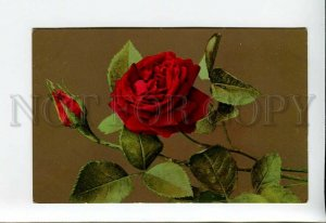 3176174 Charming RED ROSES Flowers Vintage Color PC
