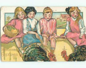 Pre-Linen thanksgiving THREE GIRLS AND ONE BOY BESIDE TURKEYS k8959
