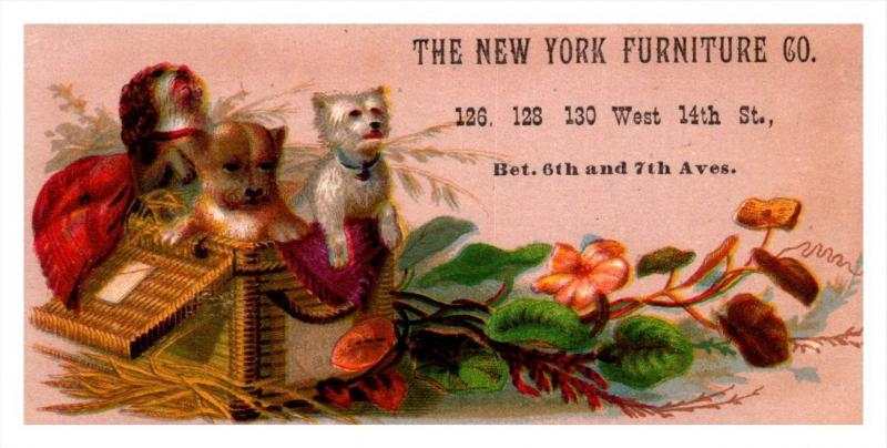 13239    Trade Card  NY City Furniture Co.  Dogs in Basket