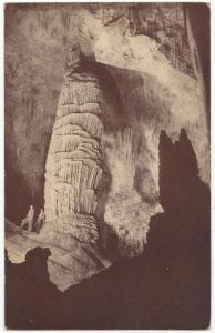 Carlsbad Caverns National Park, New Mexico, unused Postcard