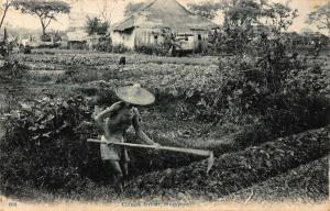 Singapore Chinese Farmer on Field House Postcard