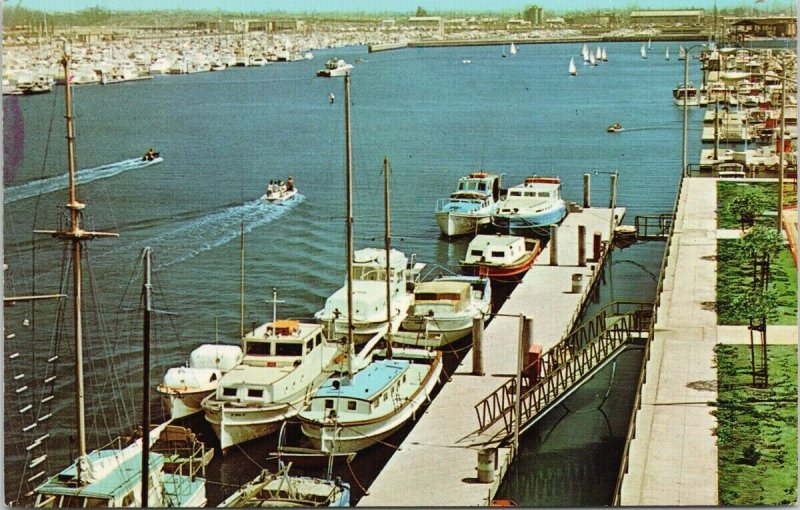 Long Beach Marina Alamitos Bay CA Boats Boating Unused Vintage Postcard F65