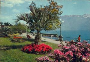 Suisse, Locarno, Lungolago Promenade, 1973 used Postcard