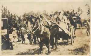Real Photo Postcard; Huge Ox Pulls Wagon, Melita Manitoba Canada Unposted