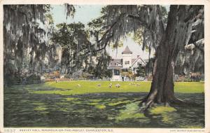 Charleston SC~Magnolia-On-The-Ashley~Ashley Hall Sheep~#11537 Detroit Pub Co