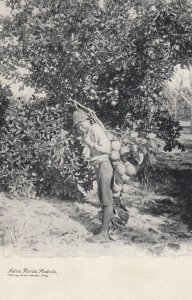 Native Florida Products , 1901-07