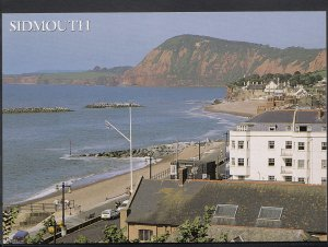 Devon Postcard - Sidmouth From Salcombe Hill     LC5624