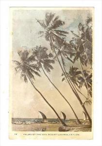 Palms by the Sea, Mount Lavina, Ceylon, 30-50s