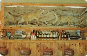 SARATOGA , WYOMING, 50-60s; Charlie's Rustic Bar