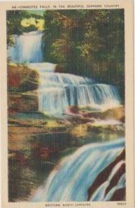 Scenic View, Connestee Falls, Sapphire Country, Western North Carolina 1930-40s