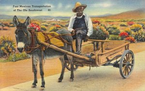 Fast Mexican Transportation of the Ole Southwest Burro c1940s Vintage Postcard