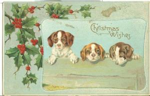 Christmas Wishes, Three Puppies, early 1900s used Postcard