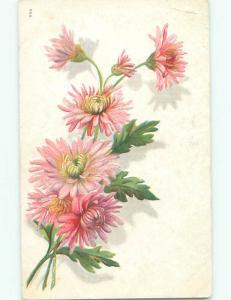 Divided-Back BEAUTIFUL FLOWERS SCENE Great Postcard AA4048