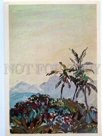 153521 OCEANIA Papua New Guinea Moresby town Evening Plakhova