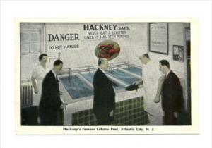 2075 NJ Atlantic City   Hackney's  Restaurant   Famous Lobster Pool