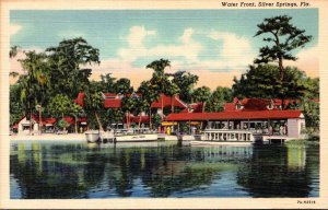 Florida Silver Springs Water Front View Curteich