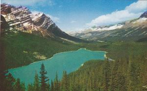 Mt Patterson Peyto Lake Icefields Highway British Columbia Canada