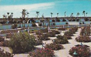 Florida Cape Coral Terrace Gardens At Cape Coral Gardens 1969