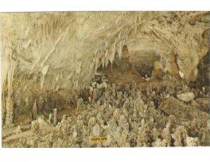Postcard Fairyland Carlsbad Caverns National Park New Mexico Chihuahuan Desert.