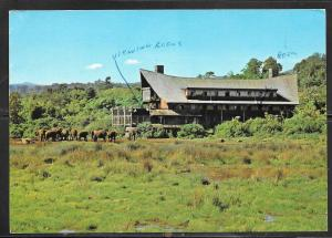 1984 Kenya The Ark & Aberdare Country Club, mailed to Czechoslovakia