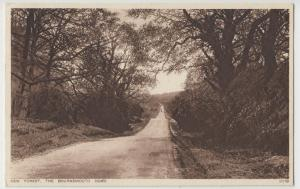 Hampshire; New Forest, The Bournemouth Road PPC By Photochrom, c 1930's, Unused