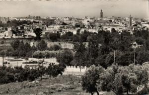 CPA Maroc - Meknés - Vue générale de la Ville Indigéne (92875)
