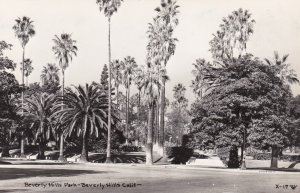 California Beverly Hills Scene In Beverly Hills Park Real Photo